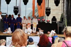 Stadtfest201624
